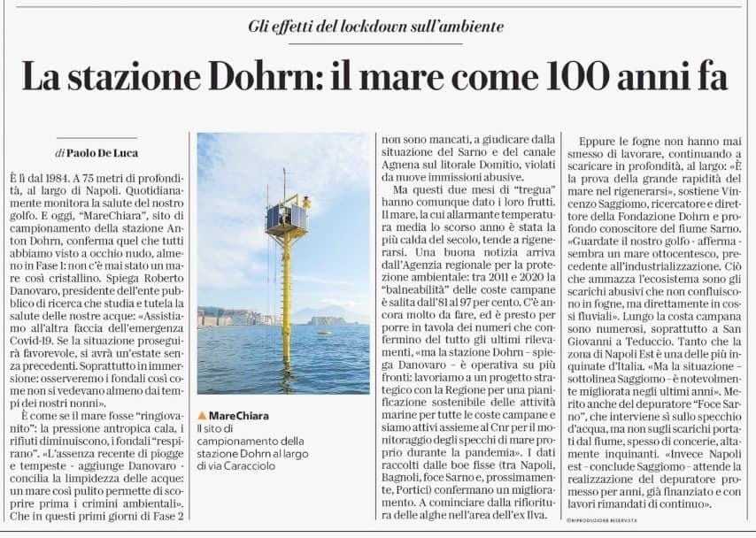 Intervista di Repubblica a Danovaro e Saggiomo: un mare così pulito svela subito i crimini ambientali. Al lavoro con la Regione per una pianificazione sostenibile delle attività marine